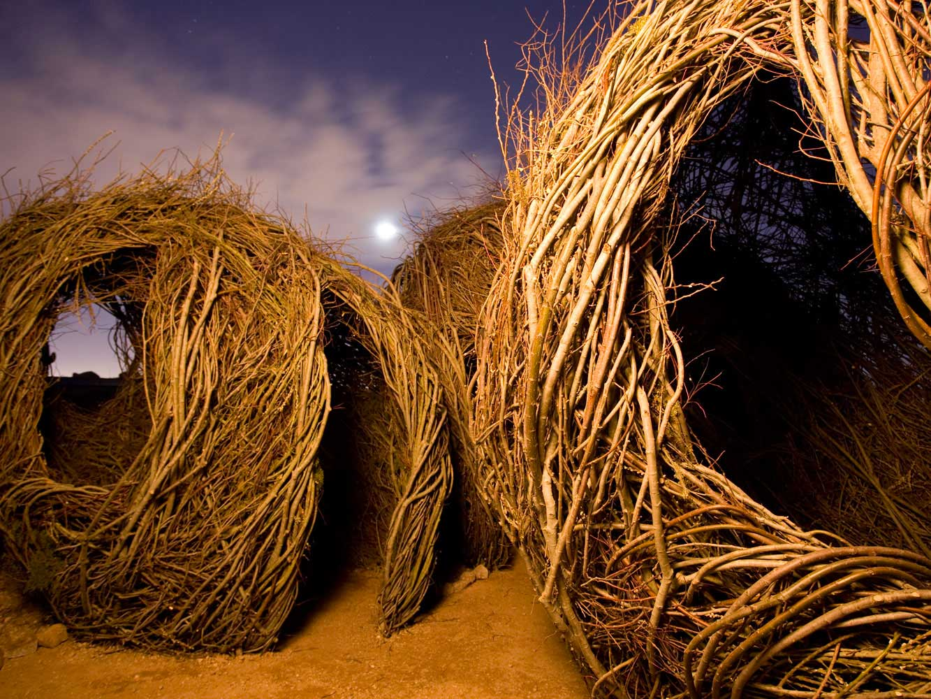Childhood Dreams, Patrick Dougherty