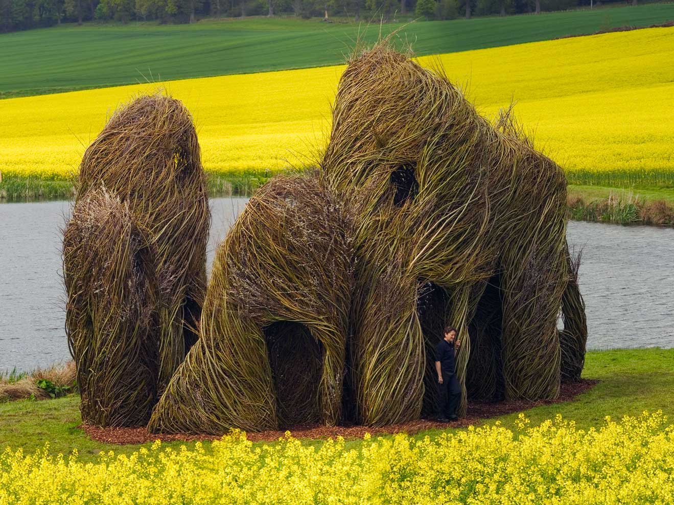 Close Ties, Patrick Dougherty