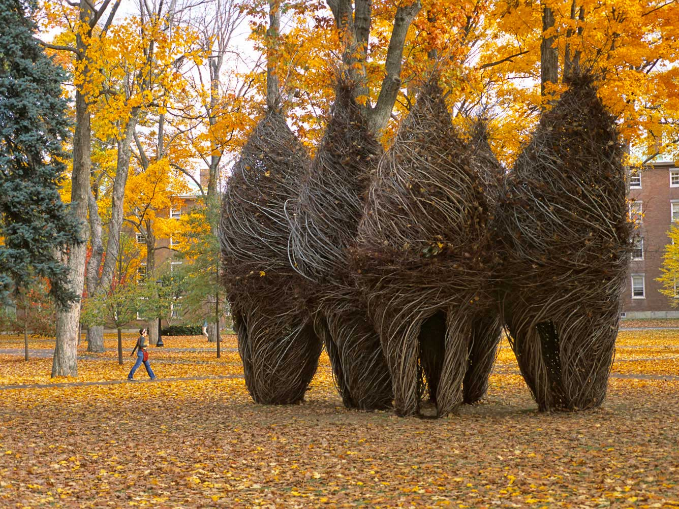 Simple Pleasures, Patrick Dougherty